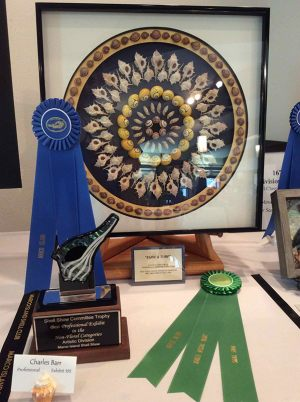 shell_show_2015_img_19